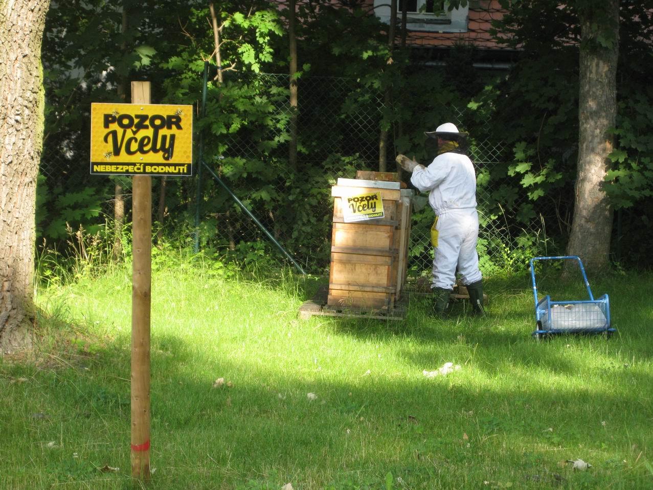 První vytáčení medu