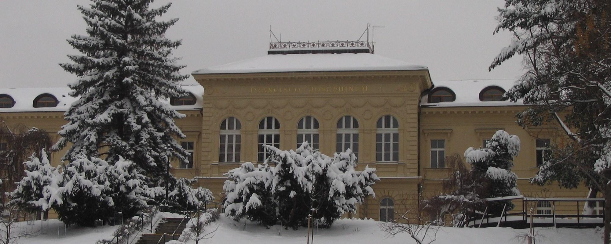 Palata-v-zimě